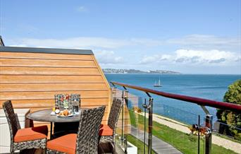 View from Lapwing 2, The Cove, Brixham, Devon