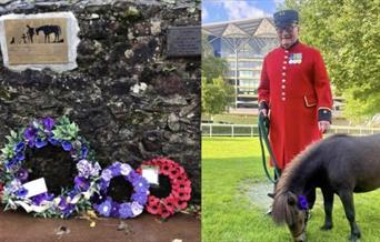 Animal Remembrance Day with Colin Thackery, Drum Inn, Cockington, Torquay