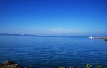 View from Battery Gardens, Brixham, Devon