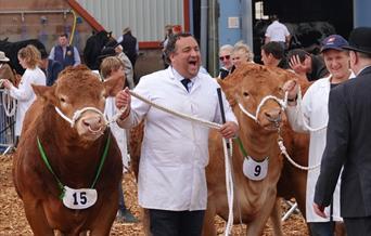 Devon County Show, Westpoint, Exeter, Devon