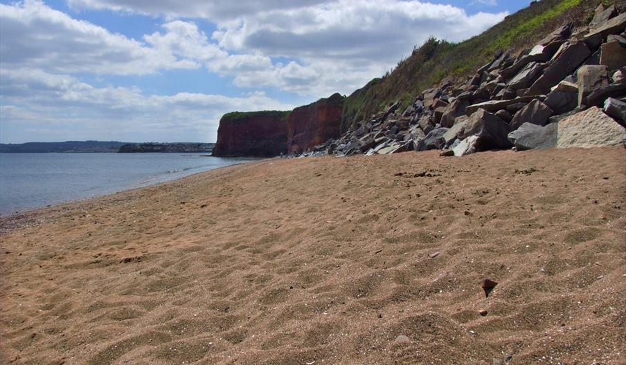 hollicombe beach