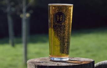 Hunts Cider, Totnes, Devon