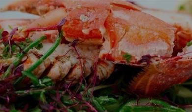 Lobster BBQ, Cary Arms Torquay Devon