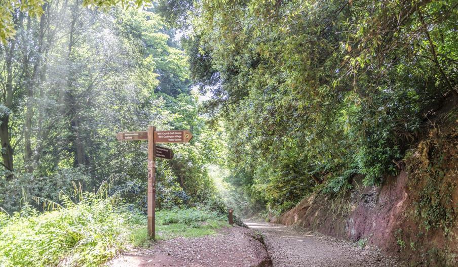 Signpost to Manscombe Woods, Cockington, Torquay, Devon