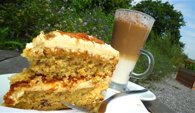 Occombe Farm Cafe, Paignton, Devon