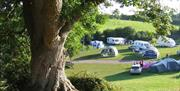 touring and camping pitches devon torquay paignton