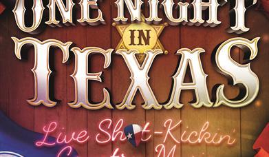 One Night in Texas, Palace Theatre, Paignton, Devon