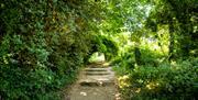Plenty of walks around Riviera Bay, Brixham, Devon