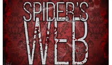 Agatha Christie's Spider's Web, Palace Theatre, Paignton, Devon