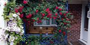 Exterior, Sunnybrook Guest House, New Road, Brixham, Devon
