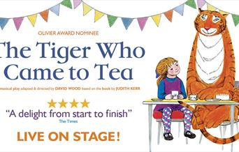 The Tiger Who Came To Tea, Princess Theatre, Torquay, Devon