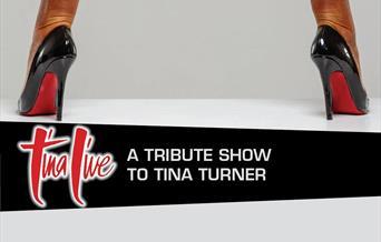 Tina Live – A Tribute Show to TINA TURNER, Babbacombe Theatre, Torquay, Devon
