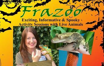 Spooky Halloween Exotic Animal Handling Sessions, Torquay Museum, Torquay, Devon
