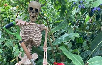The Horrible Halloween Horticulture Trail - Torre Abbey, Torquay, Devon