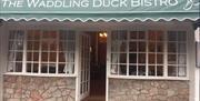 The Waddling Duck Bistro, Torquay, Devon