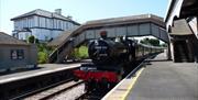 Steam train next to White Horse Guest House, Churston Ferrers, Nr Brixham, Devon