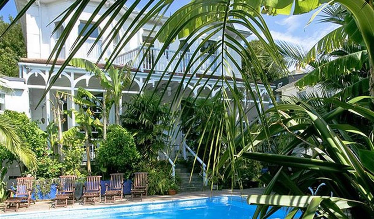 Sub tropical garden and swimming pool at Hunsdon Road, Torquay, Devon
