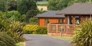 holiday lodge at Whiltehill Country Park, Paignton, Devon