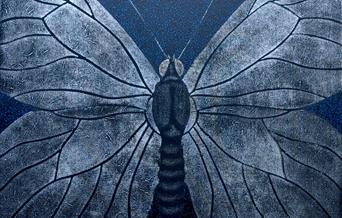The Black Veined White Butterfly