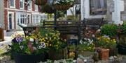 Outside seating, Ashleigh House, 61 Meadfoot Lane, Torquay, Devon