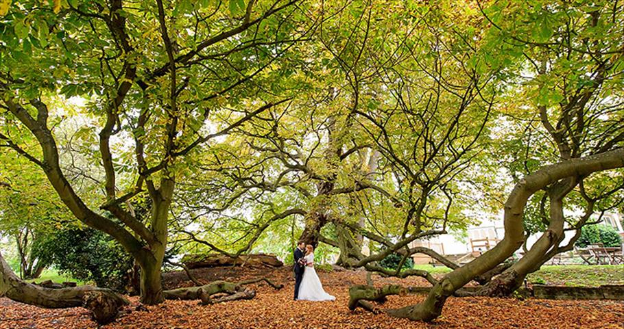 Trees feature large in weddings around Epping Forest - such as here at Mulberry House
