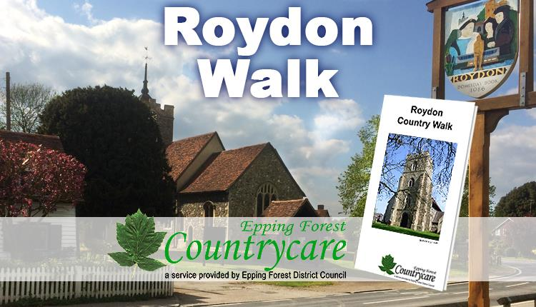 Roydon walk starts out from its village green and church.
