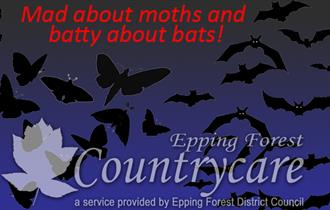 Mad about Moths and Batty about Bats free evening event at Bobbingworth Nature Reserve