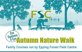 Epping Forest Field Centre children's Autumn Nature Walk for 5 to 7 year olds.