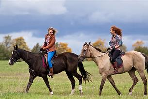 Horse riding in London's Epping Forest.