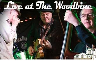 The Hill Street Blues Band Live at the Woodbine. Guaranteed to make you dance your socks off