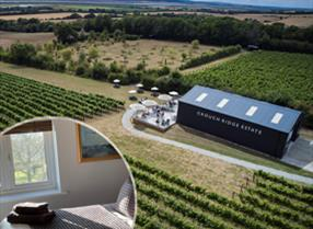 Win a Wine Tasting Tour & Stay