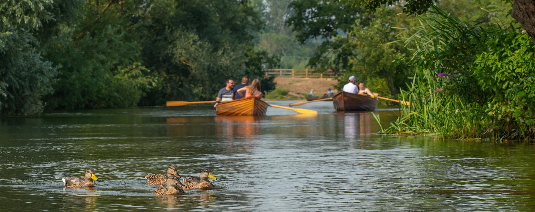 Dedham rowing on River Stour