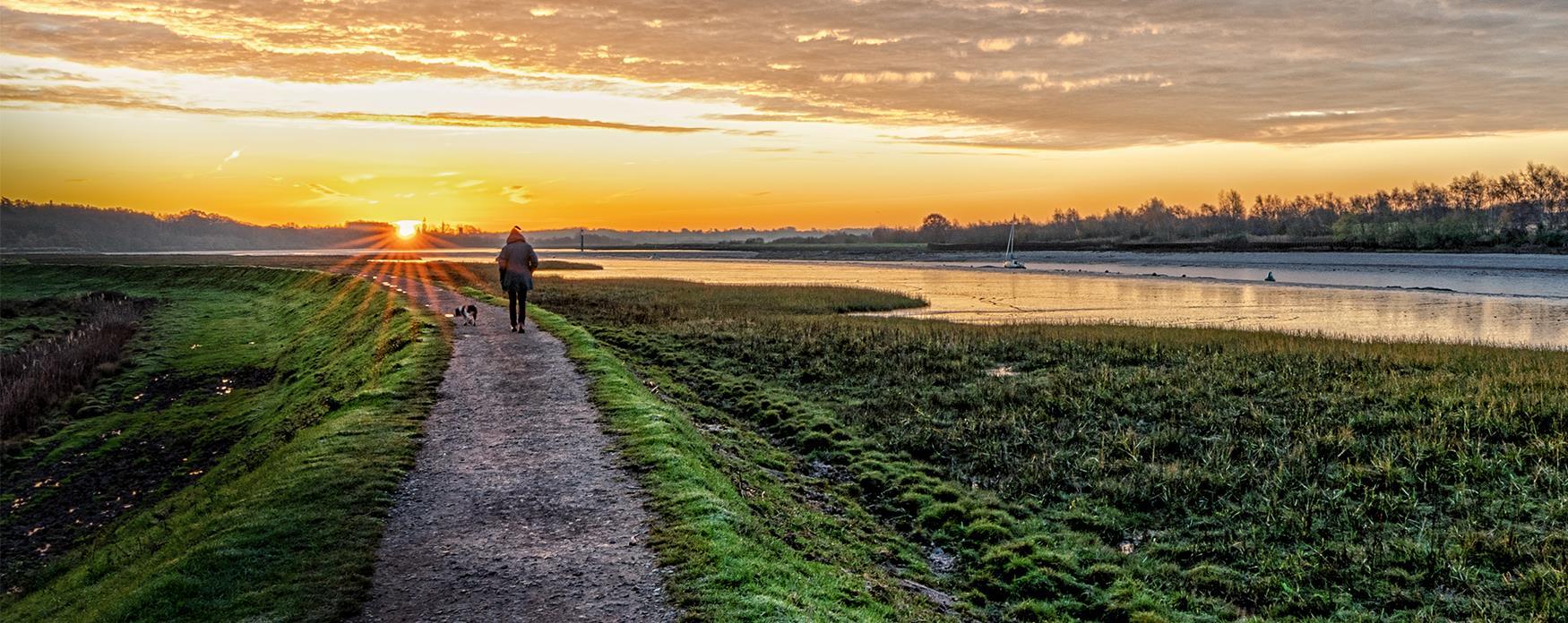 A dog walker at sunrise in Wivenhoe