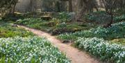 Myddleton Gardens