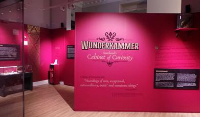 Wunderkammer Exhibition Southend
