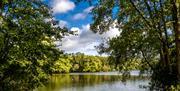 Lake at Weald Country Park
