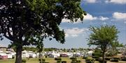 Touring pitches at Waldegraves Holiday Park, Mersea Island, Essex