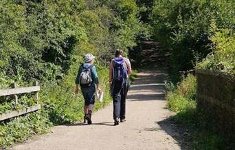 Walking along the Colchester Orbital