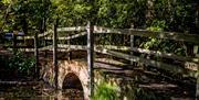 Bridge at Weald Country Park