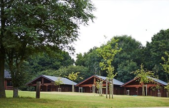 view of 3 log cabins through trees