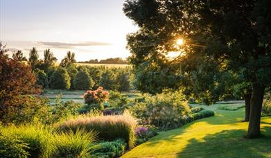 Late night opening at RHS Hyde Hall