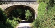 Flitch Bridge Essex