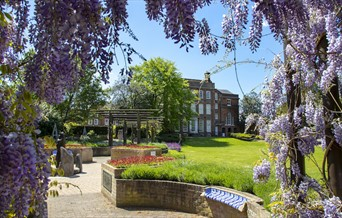 Visit Colchester Information Centre exterior with wisteria