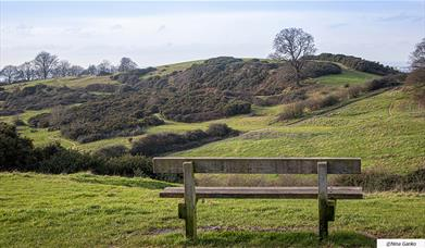 Hadleigh Country Park