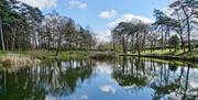 Oakwood Pond