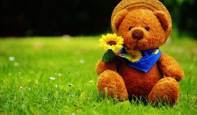 Picture of teddy bear