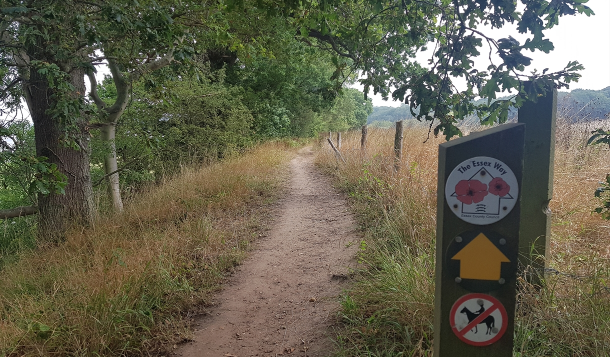 Tendring walks