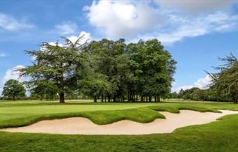 The Warren Golf Course - 12th Hole Beech Drive