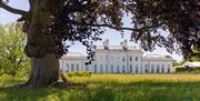Hylands Estate
