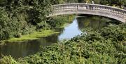 Stone Bridge, Central Park, Chelmsford